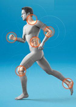 Фитнес и медицина