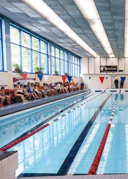 Соревнования по плаванию. Фото